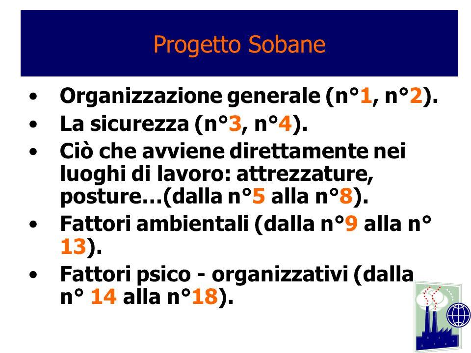 Organizzazione generale (n°1, n°2). La sicurezza (n°3, n°4). Ciò che avviene direttamente nei luoghi di lavoro: attrezzature, posture…(dalla n°5 alla