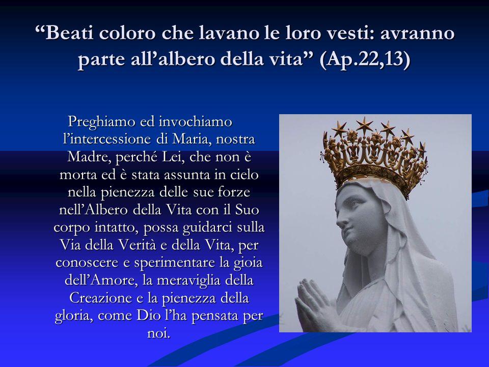 Beati coloro che lavano le loro vesti: avranno parte allalbero della vita (Ap.22,13) Preghiamo ed invochiamo lintercessione di Maria, nostra Madre, pe