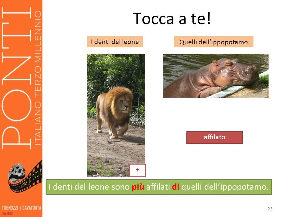 23 Tocca a te! I denti del leoneQuelli dellippopotamo affilato I denti del leone sono più affilati di quelli dellippopotamo. +