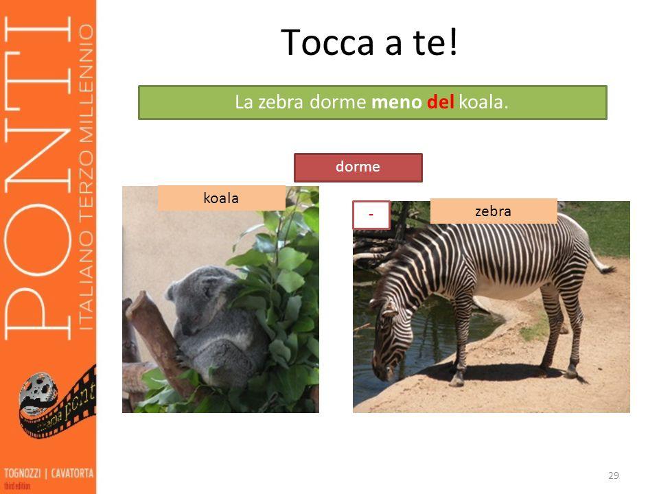 29 Tocca a te! koala zebra dorme La zebra dorme meno del koala. -