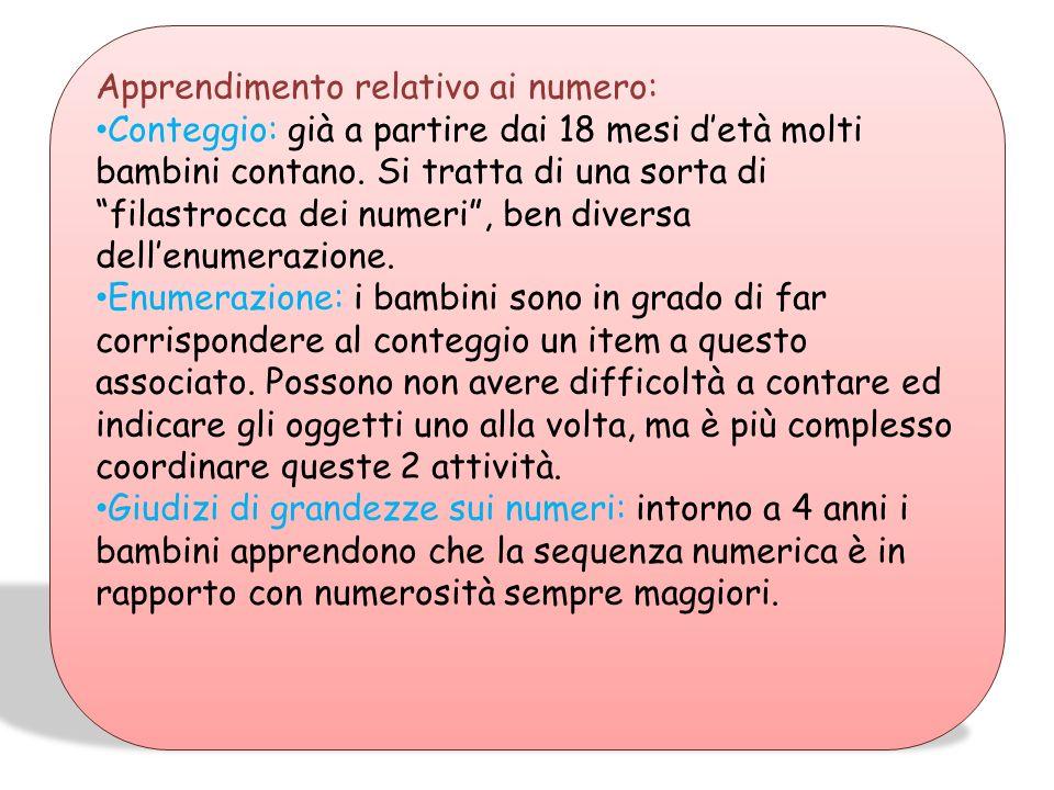 SVILUPPO DELLE COMPETENZE: Secondo Ginsburg (1977) lapprendimento del sistema aritmetico avviene attraverso 3 livelli: 1° stadio naturale:non richiede
