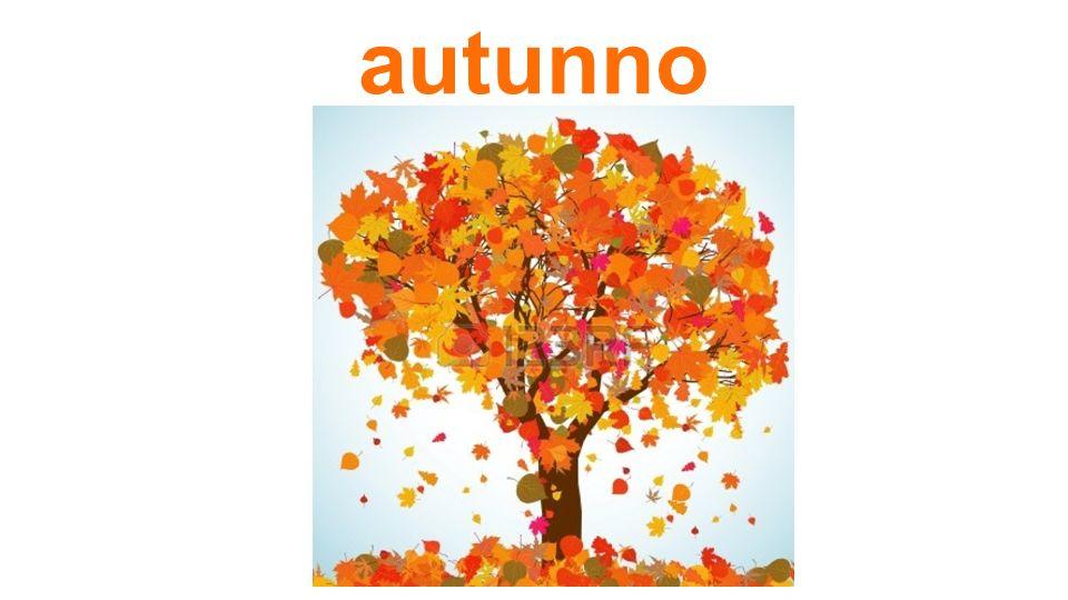 Cosa fai in autunno?