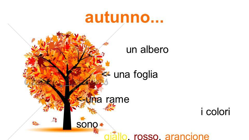 autunno... un albero <- una foglia <-una rame i colori sono giallo, rosso, arancione