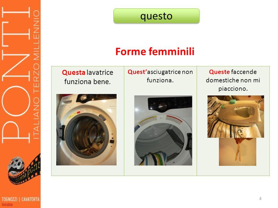 Forme femminili Questa lavatrice funziona bene. Questasciugatrice non funziona. Queste faccende domestiche non mi piacciono. 4 questo