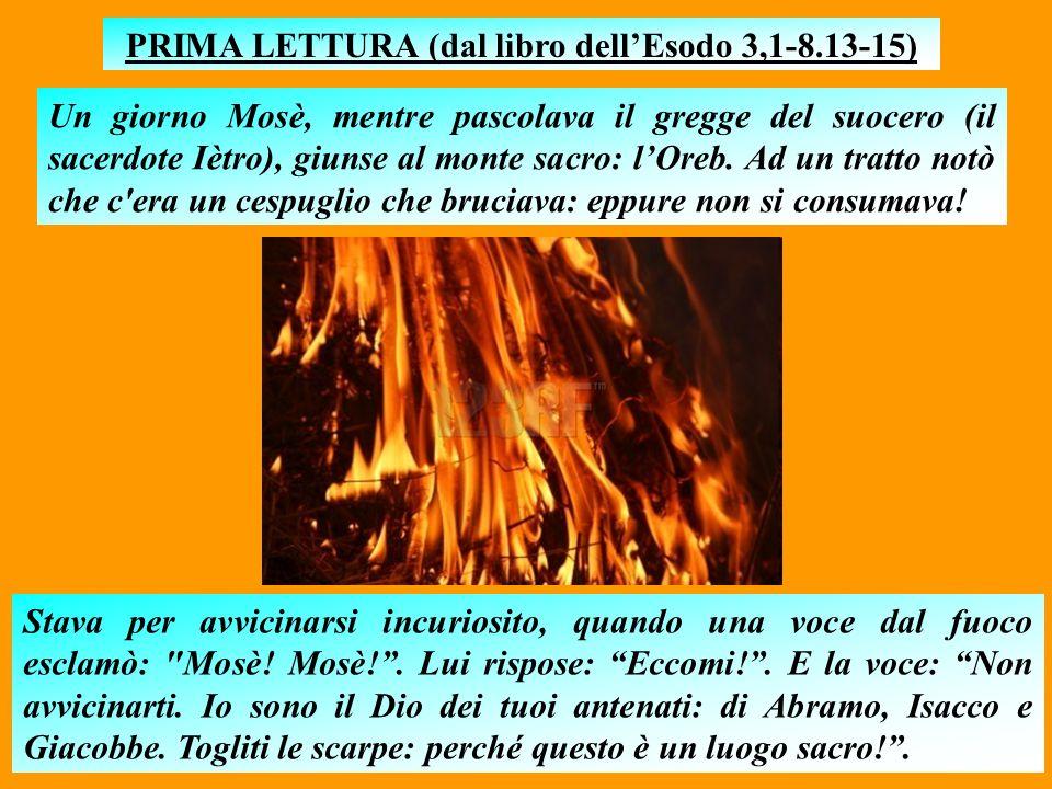 P R E C I S A Z I O N E Queste NON sono le letture della Messa originali: si tratta di mie rielaborazioni, comunque molto aderenti ai testi.