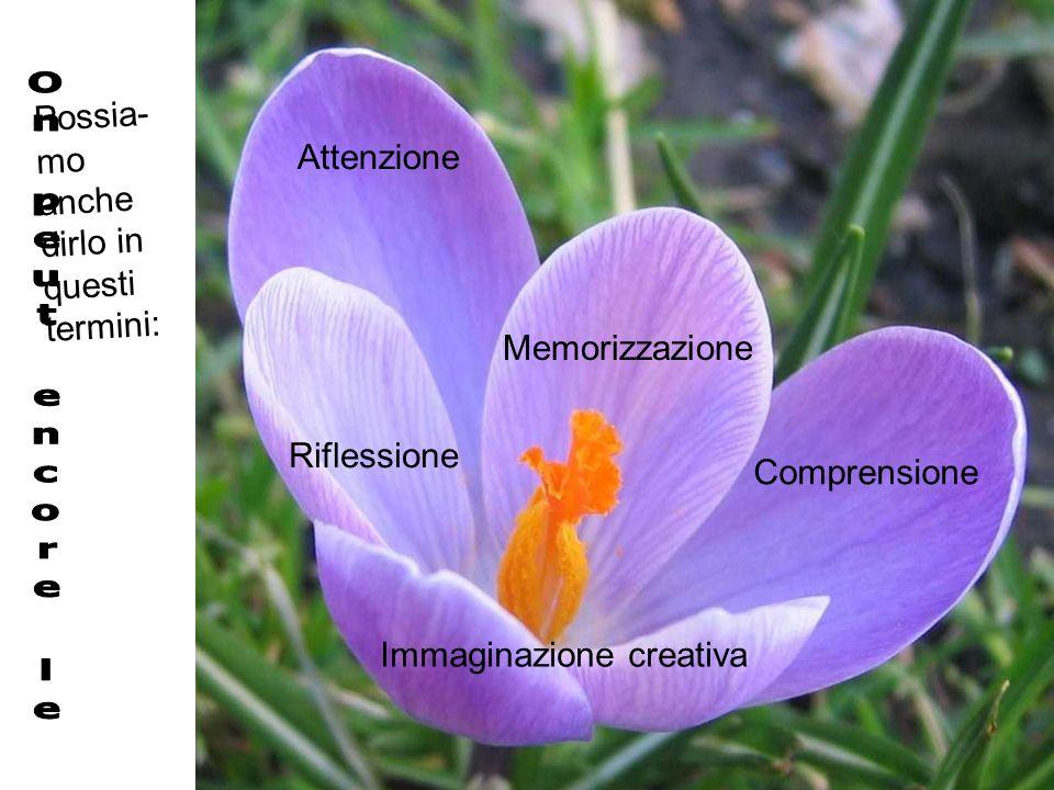 Attenzione Comprensione Memorizzazione Immaginazione creativa Riflessione Possia- mo anche dirlo in questi termini: