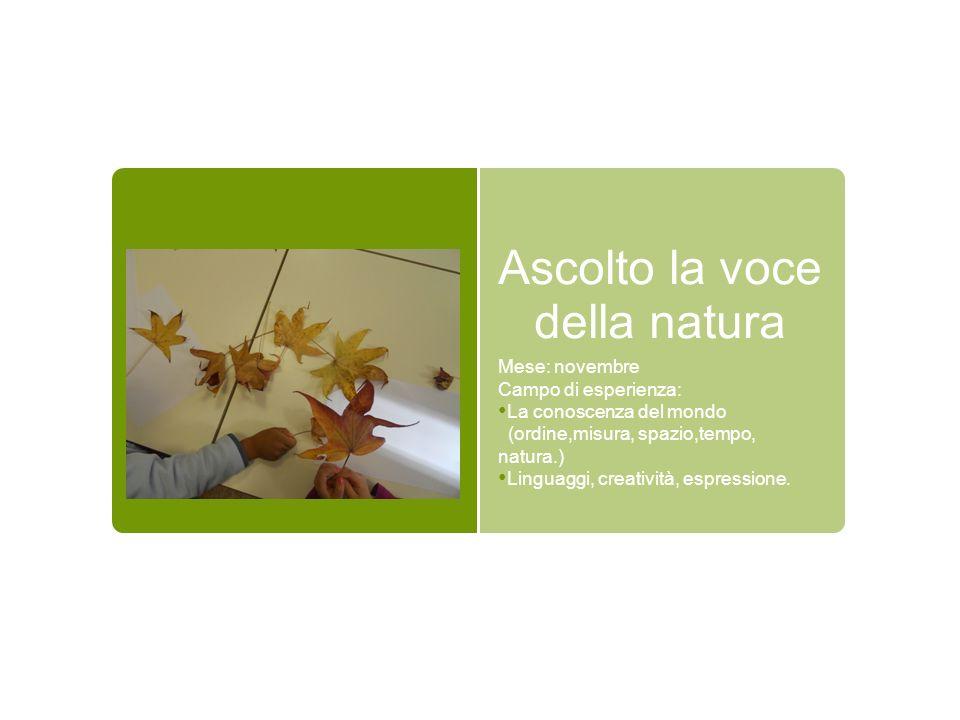Conversazione: Ins.: secondo voi perché le foglie degli alberi in autunno cambiano colore.
