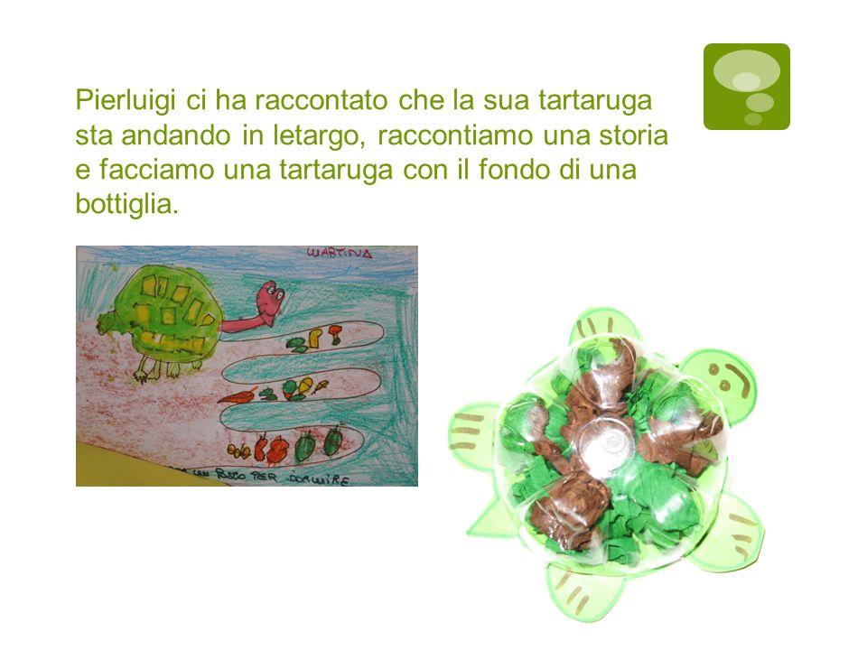 Pierluigi ci ha raccontato che la sua tartaruga sta andando in letargo, raccontiamo una storia e facciamo una tartaruga con il fondo di una bottiglia.