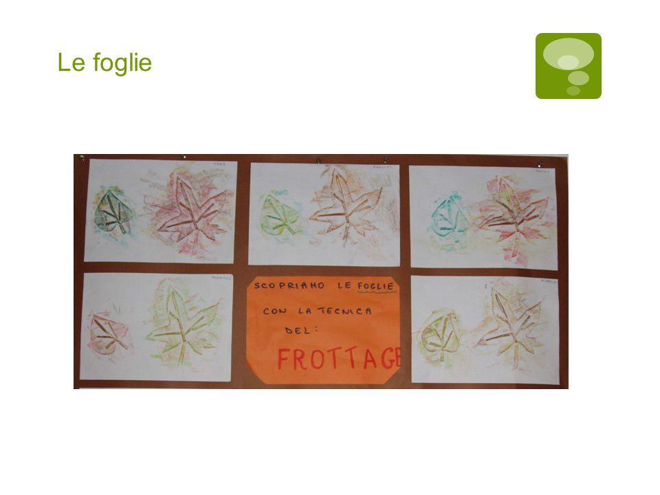 Di che forma sono le foglie, seguiamo il loro contorno Ci sono foglie grandi, foglie piccole e anche medie.