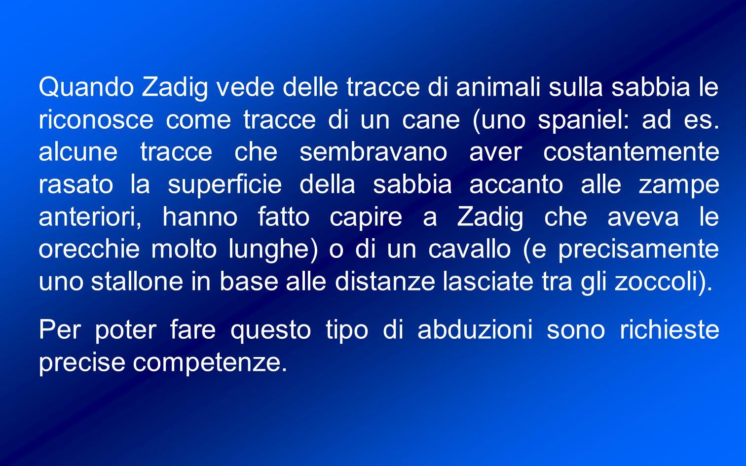 Quando Zadig vede delle tracce di animali sulla sabbia le riconosce come tracce di un cane (uno spaniel: ad es.