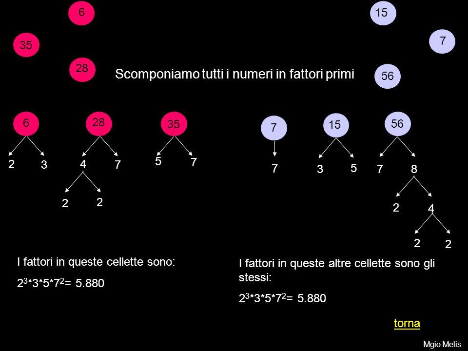 7 15 56 Scomponiamo tutti i numeri in fattori primi 6 35 28 6 2 3 35 7 5 2 4 2 2 7 7 15 5 3 56 7 8 28 7 4 2 2 I fattori in queste cellette sono: 2 3 *