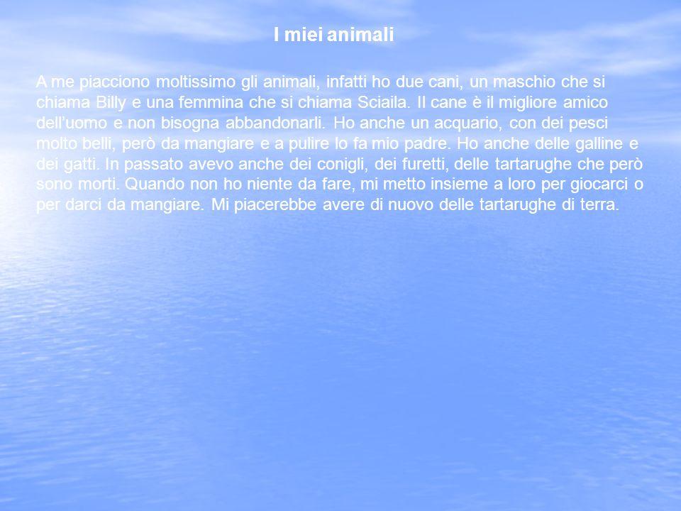 I miei animali A me piacciono moltissimo gli animali, infatti ho due cani, un maschio che si chiama Billy e una femmina che si chiama Sciaila.
