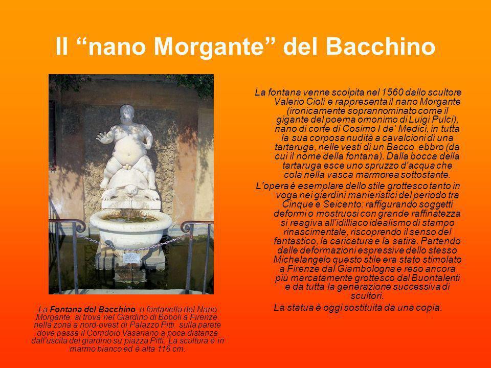 Il nano Morgante del Bacchino La fontana venne scolpita nel 1560 dallo scultore Valerio Cioli e rappresenta il nano Morgante (ironicamente soprannomin