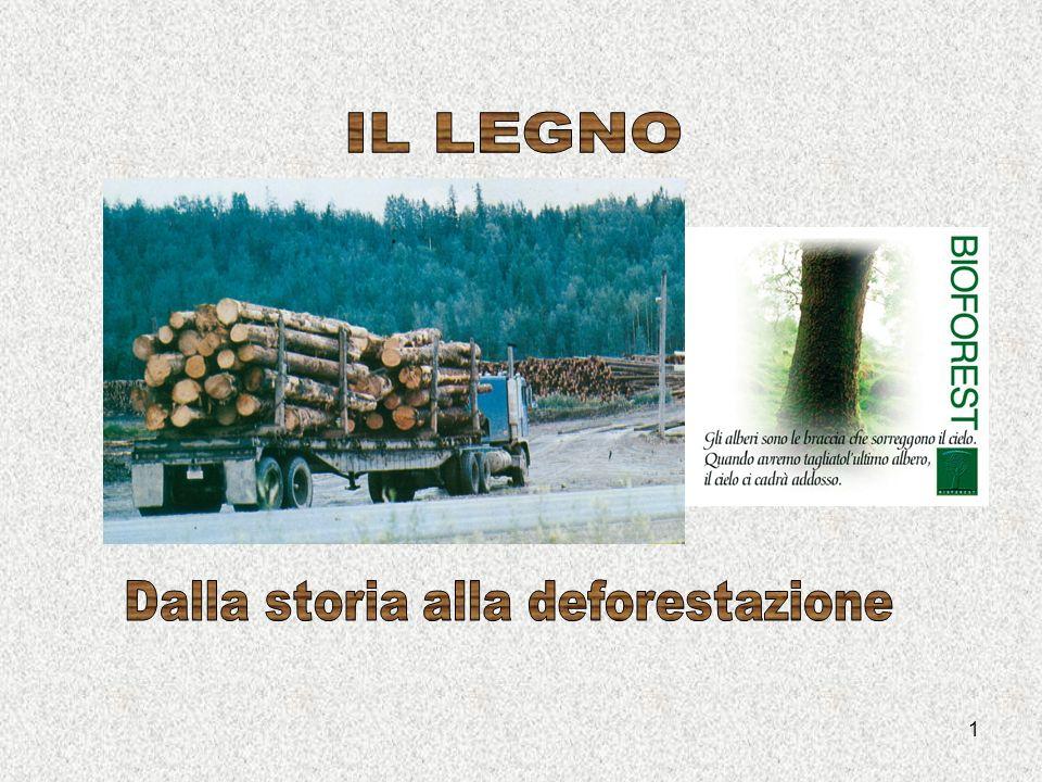 12 Da sempre luomo per vivere ha avuto bisogno del legno.