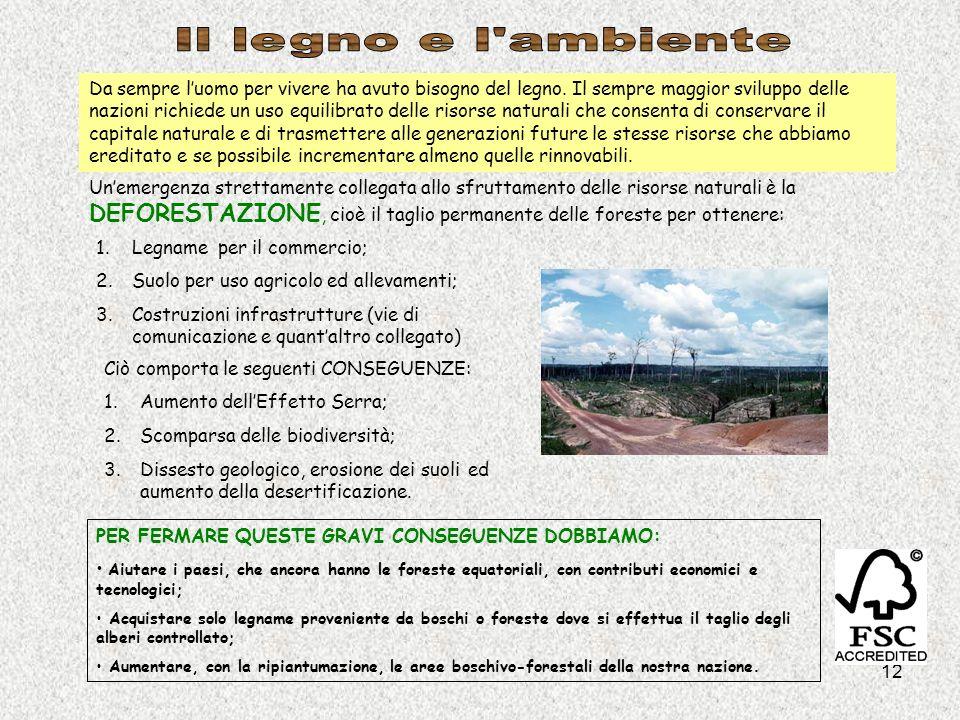 12 Da sempre luomo per vivere ha avuto bisogno del legno. Il sempre maggior sviluppo delle nazioni richiede un uso equilibrato delle risorse naturali