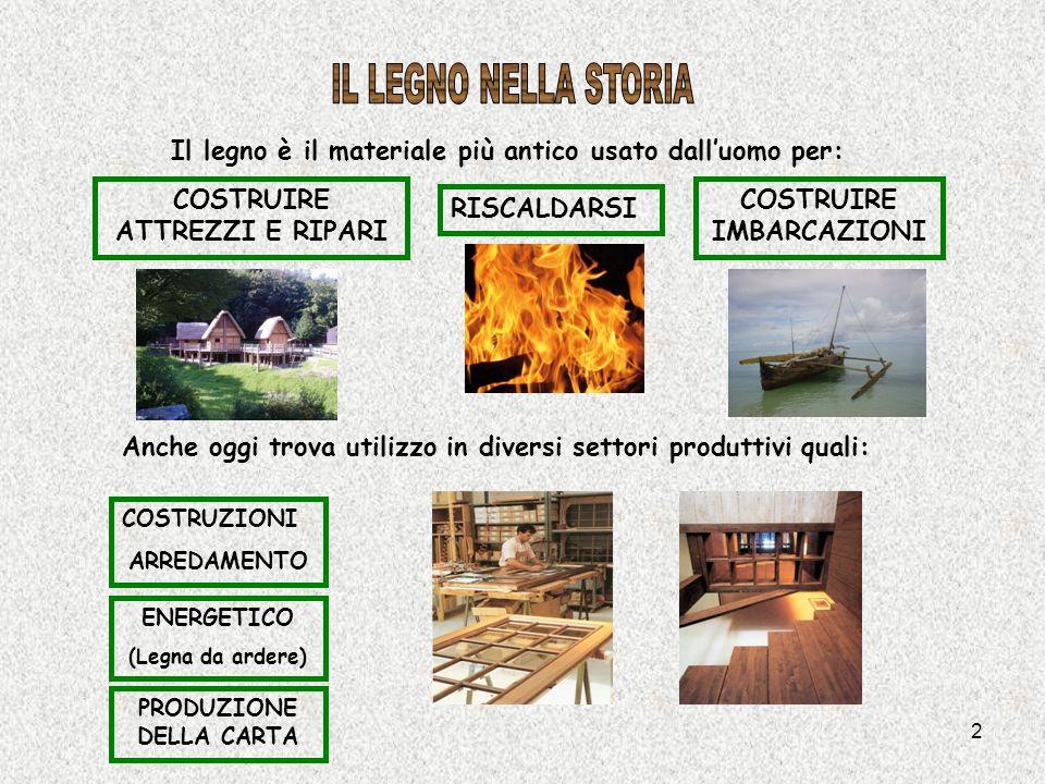 2 Il legno è il materiale più antico usato dalluomo per: Anche oggi trova utilizzo in diversi settori produttivi quali: COSTRUZIONI ARREDAMENTO PRODUZ