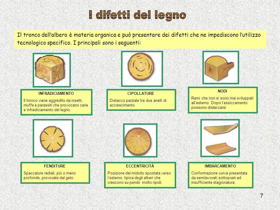 7 Il tronco dellalbero è materia organica e può presentare dei difetti che ne impediscono lutilizzo tecnologico specifico. I principali sono i seguent