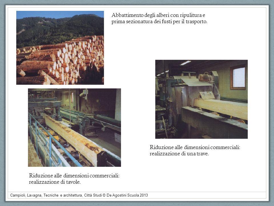 Campioli, Lavagna, Tecniche e architettura, Città Studi © De Agostini Scuola 2013 Abbattimento degli alberi con ripulitura e prima sezionatura dei fus