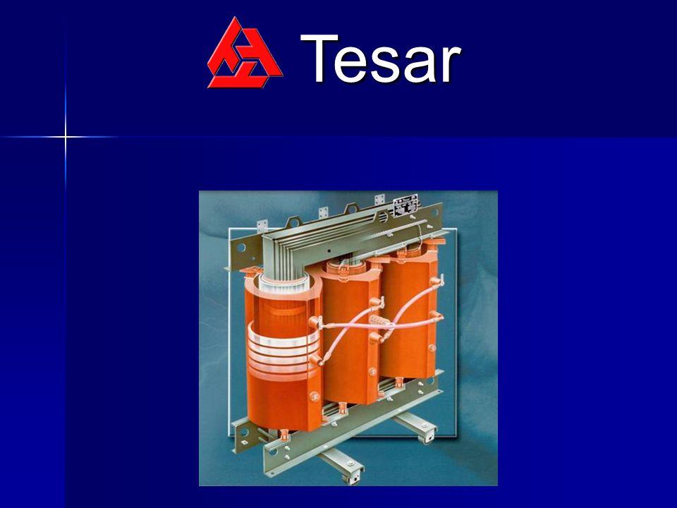 La società Tesar, con un fatturato 2004 di 22,7 milioni di Euro e 110 collaboratori, rappresenta una delle più importanti realtà operanti nel nostro Paese.