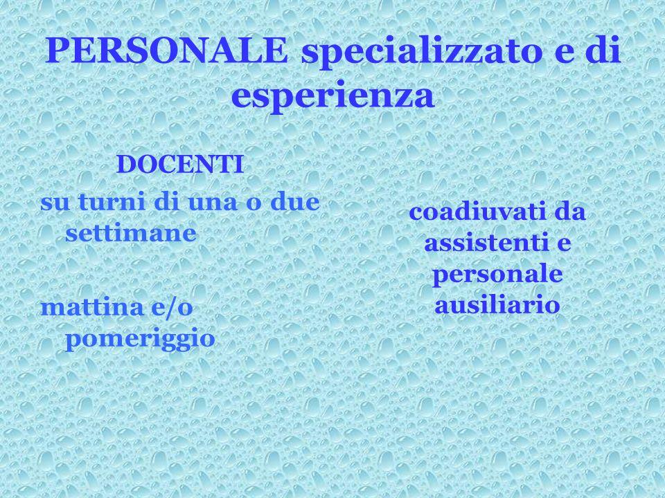 PERSONALE specializzato e di esperienza DOCENTI su turni di una o due settimane mattina e/o pomeriggio coadiuvati da assistenti e personale ausiliario