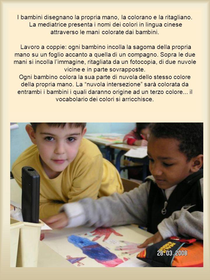 Lingue in colore: Il puzzle delle lingue.