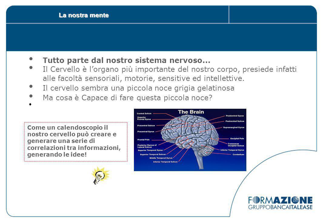 La nostra mente Tutto parte dal nostro sistema nervoso...