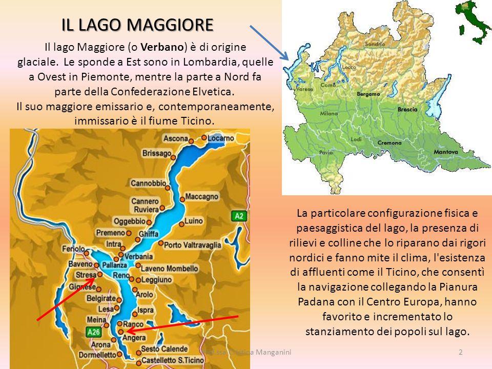 IL LAGO MAGGIORE La particolare configurazione fisica e paesaggistica del lago, la presenza di rilievi e colline che lo riparano dai rigori nordici e