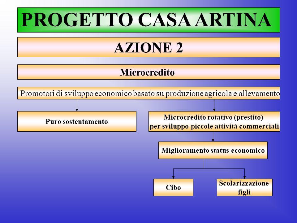 PROGETTO CASA ARTINA AZIONE 2 Microcredito Promotori di sviluppo economico basato su produzione agricola e allevamento Puro sostentamento Microcredito