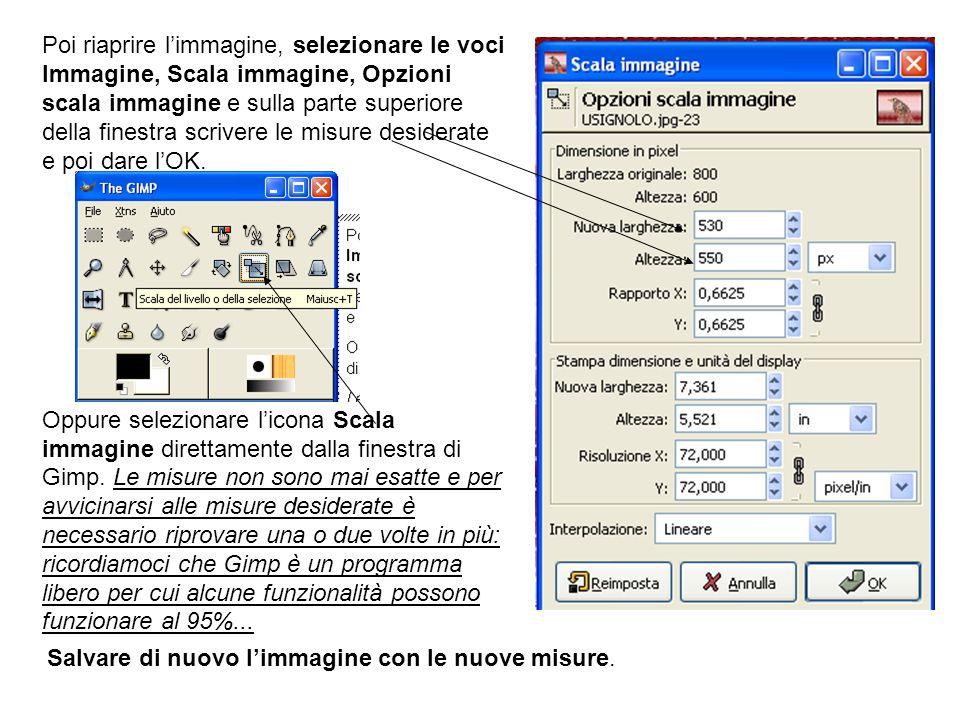 Poi riaprire limmagine, selezionare le voci Immagine, Scala immagine, Opzioni scala immagine e sulla parte superiore della finestra scrivere le misure