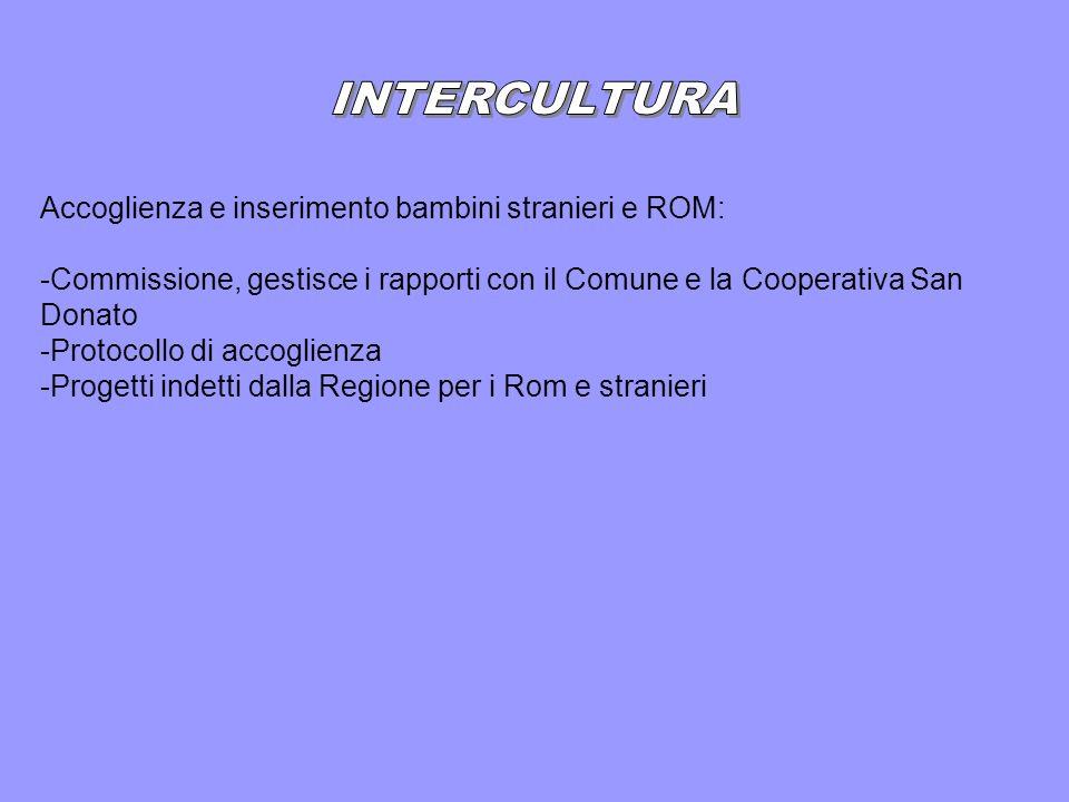 Accoglienza e inserimento bambini stranieri e ROM: -Commissione, gestisce i rapporti con il Comune e la Cooperativa San Donato -Protocollo di accoglienza -Progetti indetti dalla Regione per i Rom e stranieri