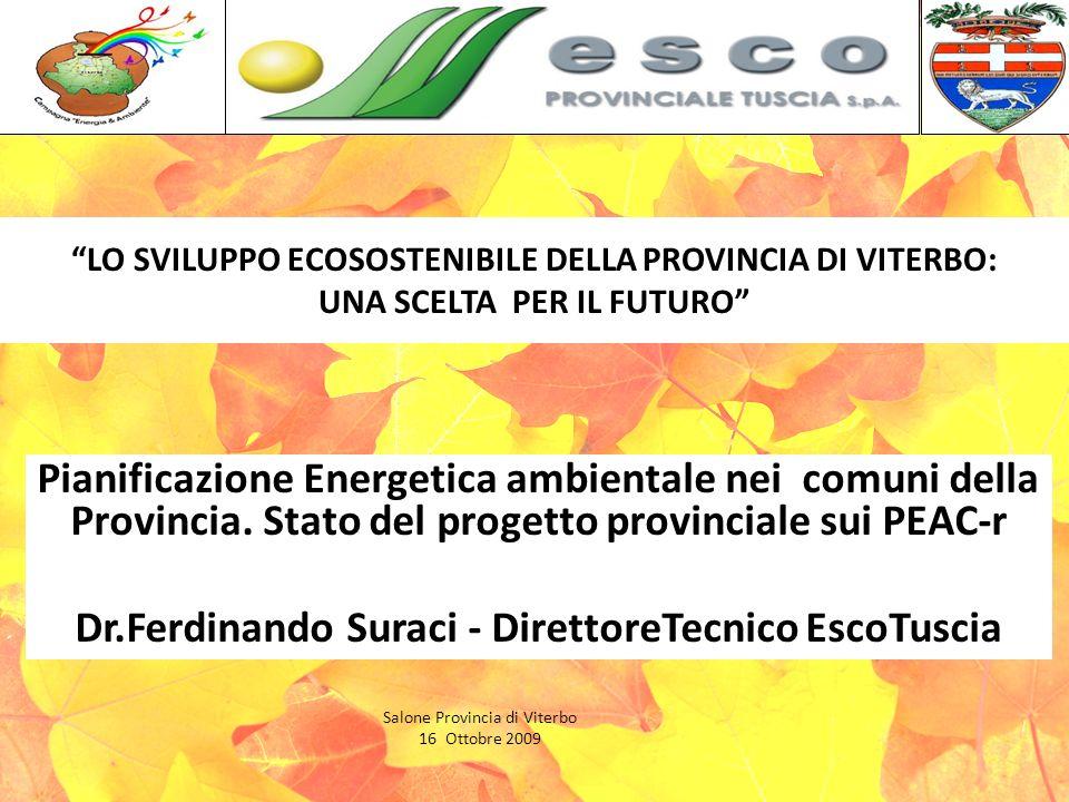 LO SVILUPPO ECOSOSTENIBILE DELLA PROVINCIA DI VITERBO: UNA SCELTA PER IL FUTURO Pianificazione Energetica ambientale nei comuni della Provincia.