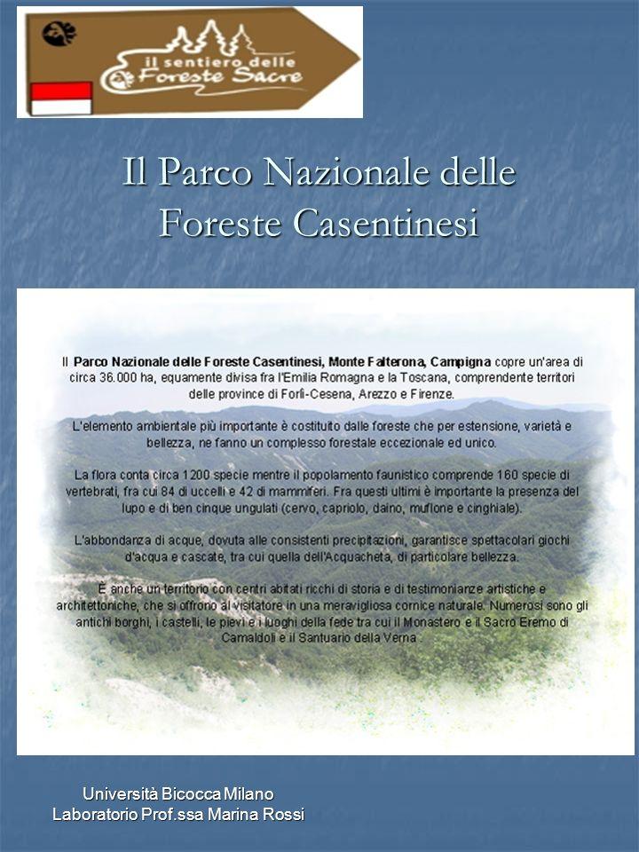 Università Bicocca Milano Laboratorio Prof.ssa Marina Rossi Il Parco Nazionale delle Foreste Casentinesi