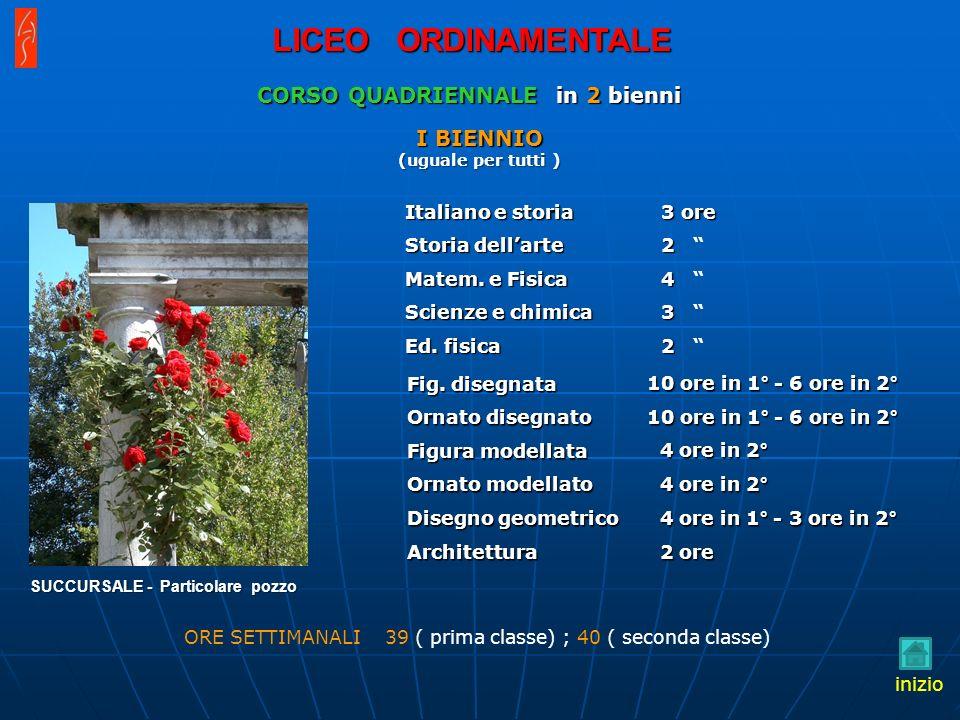 SUCCURSALE - Particolare pozzo Fig. disegnata Ornato disegnato Figura modellata Ornato modellato Disegno geometrico Architettura Italiano e storia Sto