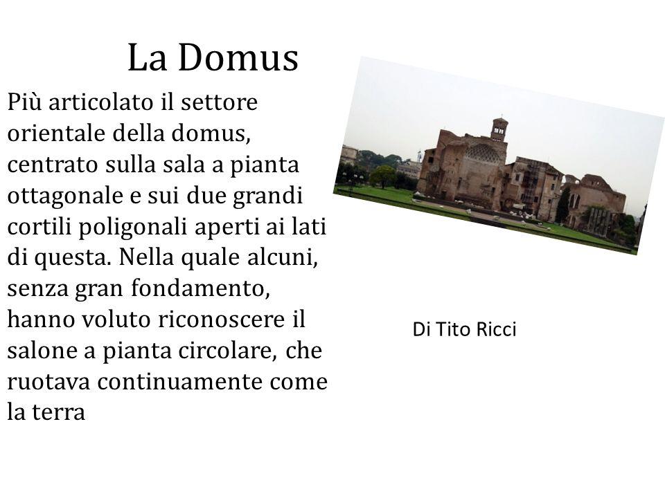 La Domus Più articolato il settore orientale della domus, centrato sulla sala a pianta ottagonale e sui due grandi cortili poligonali aperti ai lati d
