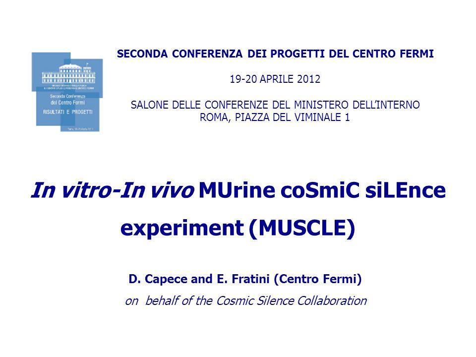 SECONDA CONFERENZA DEI PROGETTI DEL CENTRO FERMI 19-20 APRILE 2012 SALONE DELLE CONFERENZE DEL MINISTERO DELLINTERNO ROMA, PIAZZA DEL VIMINALE 1 In vitro-In vivo MUrine coSmiC siLEnce experiment (MUSCLE) D.