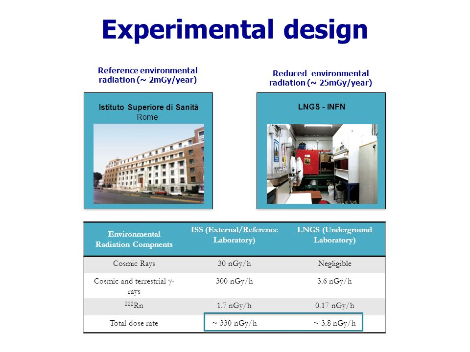 Experimental design Istituto Superiore di Sanità Rome LNGS - INFN Reference environmental radiation (~ 2mGy/year) Reduced environmental radiation (~ 25mGy/year) Environmental Radiation Compnents ISS (External/Reference Laboratory) LNGS (Underground Laboratory) Cosmic Rays30 nGy/hNegligible Cosmic and terrestrial - rays 300 nGy/h3.6 nGy/h 222 Rn1.7 nGy/h0.17 nGy/h Total dose rate~ 330 nGy/h~ 3.8 nGy/h