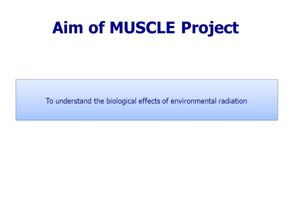Aim of MUSCLE Project To understand the biological effects of environmental radiation To understand the biological effects of environmental radiation