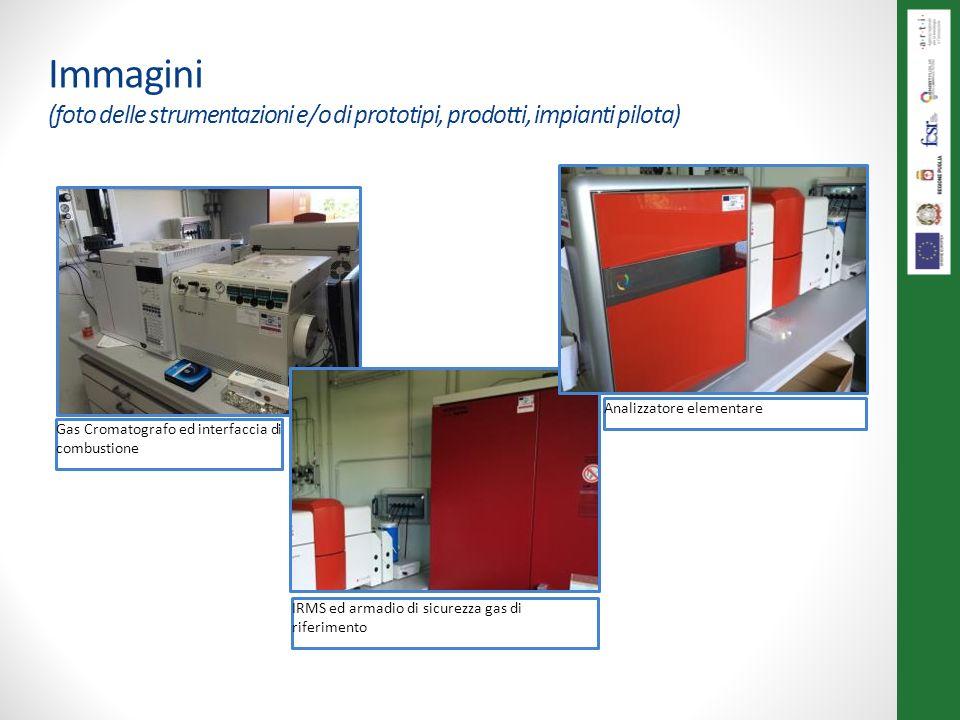 Immagini (foto delle strumentazioni e/o di prototipi, prodotti, impianti pilota) Gas Cromatografo ed interfaccia di combustione IRMS ed armadio di sic