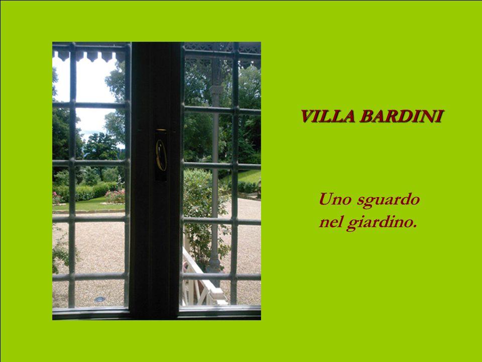 VILLA BARDINI Il boschetto qui sotto, fa parte del parco della villa. Allorizzonte, i monti del Casentino da dove proviene lArno.