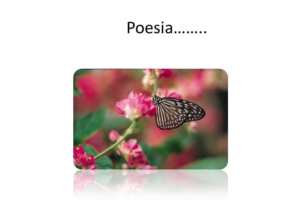 Poesia……..