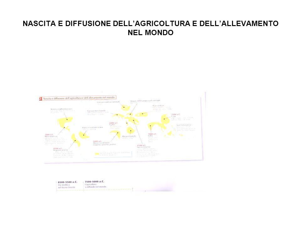 NASCITA E DIFFUSIONE DELLAGRICOLTURA E DELLALLEVAMENTO NEL MONDO