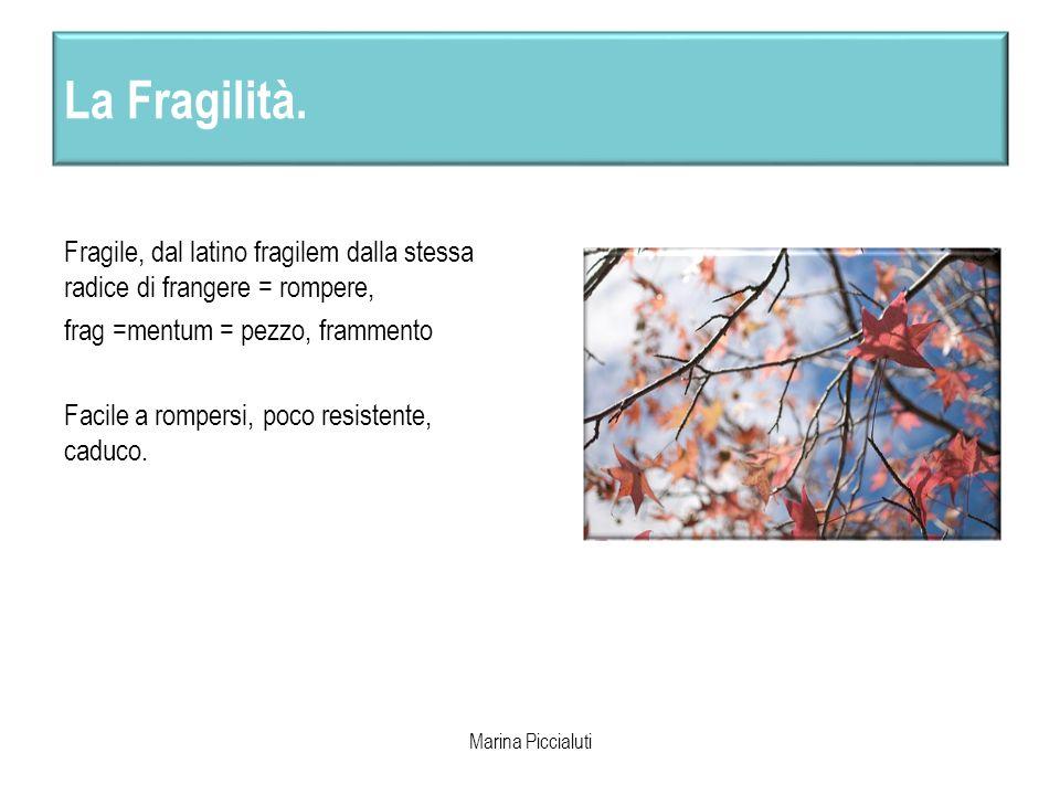 La Fragilità. Fragile, dal latino fragilem dalla stessa radice di frangere = rompere, frag =mentum = pezzo, frammento Facile a rompersi, poco resisten