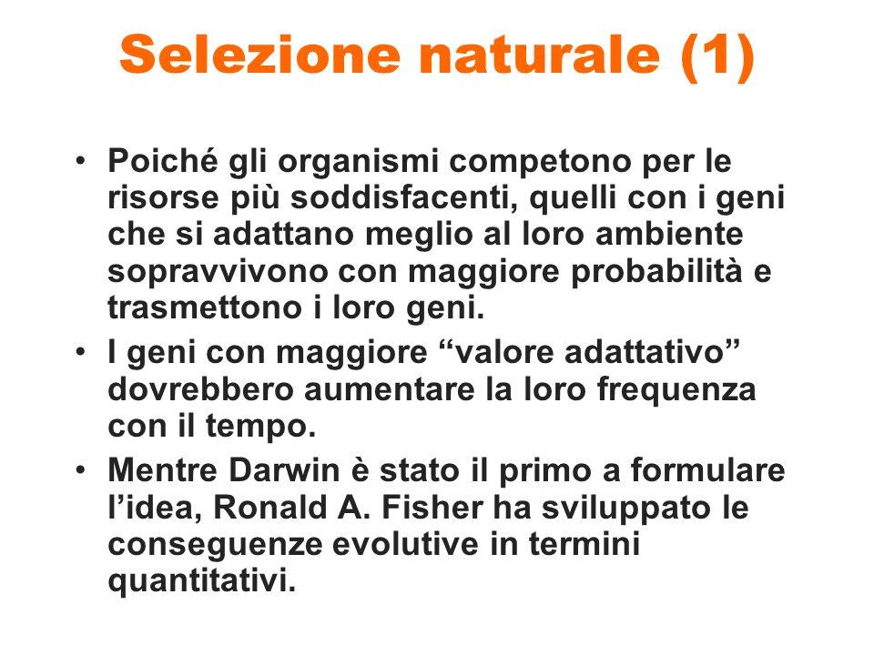 Selezione naturale (1) Poiché gli organismi competono per le risorse più soddisfacenti, quelli con i geni che si adattano meglio al loro ambiente sopr