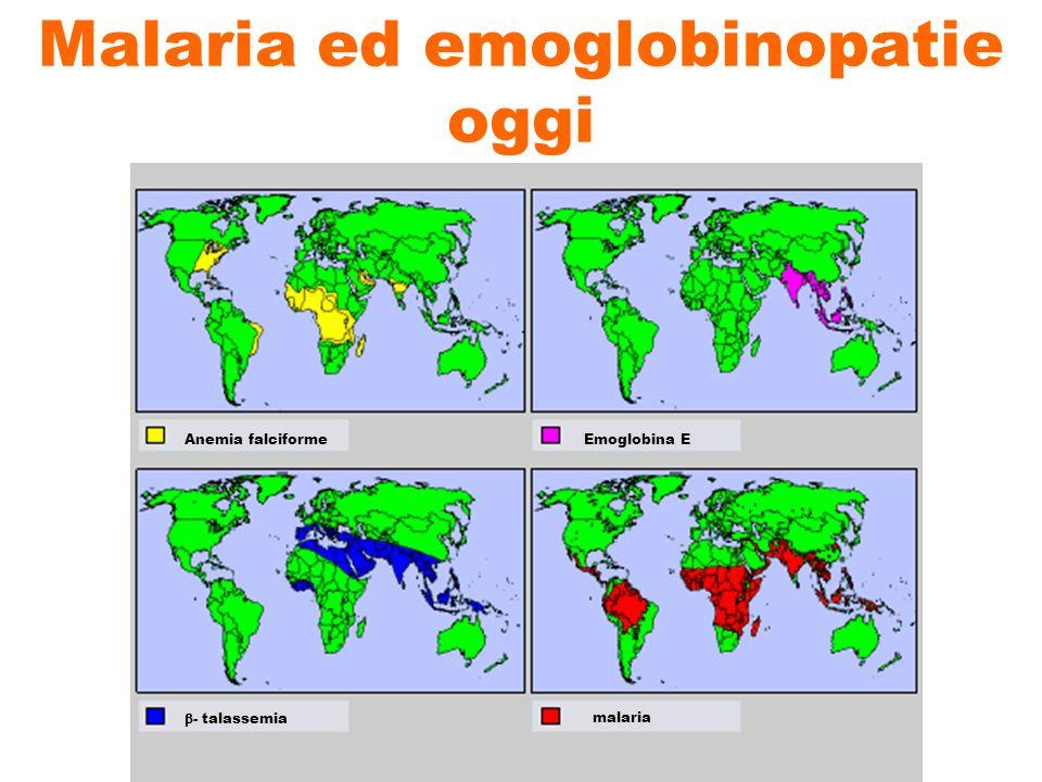 Malaria ed emoglobinopatie oggi Anemia falciformeEmoglobina E - talassemiamalaria