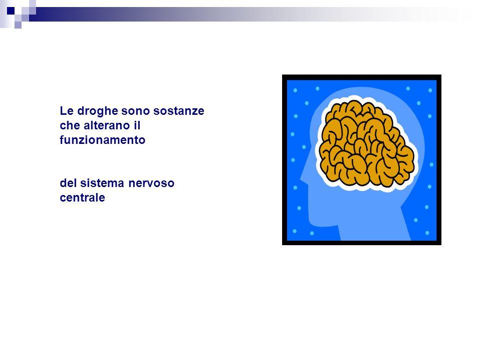 Le droghe sono sostanze che alterano il funzionamento del sistema nervoso centrale