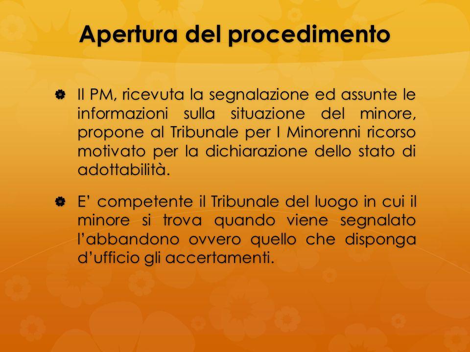 Apertura del procedimento Il PM, ricevuta la segnalazione ed assunte le informazioni sulla situazione del minore, propone al Tribunale per I Minorenni