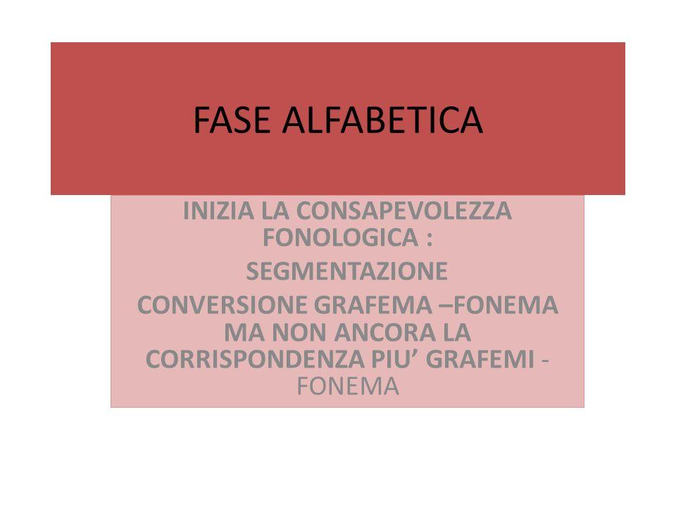FASE ALFABETICA INIZIA LA CONSAPEVOLEZZA FONOLOGICA : SEGMENTAZIONE CONVERSIONE GRAFEMA –FONEMA MA NON ANCORA LA CORRISPONDENZA PIU GRAFEMI - FONEMA