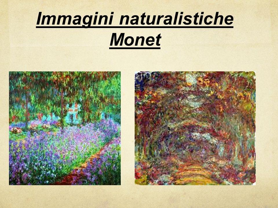 Immagini naturalistiche Monet