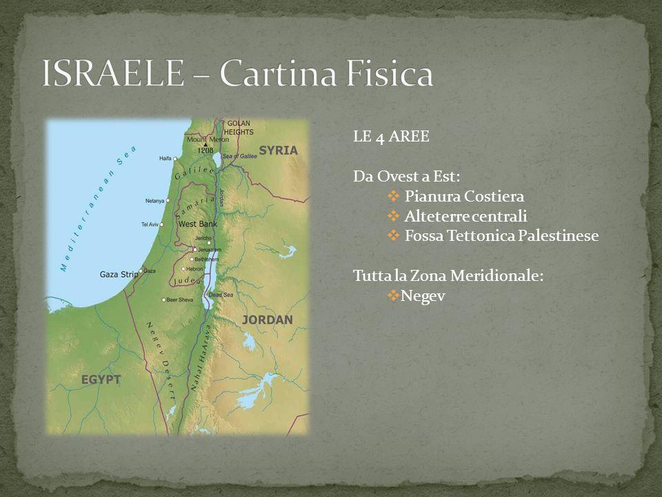 LE 4 AREE Da Ovest a Est: Pianura Costiera Alteterre centrali Fossa Tettonica Palestinese Tutta la Zona Meridionale: Negev