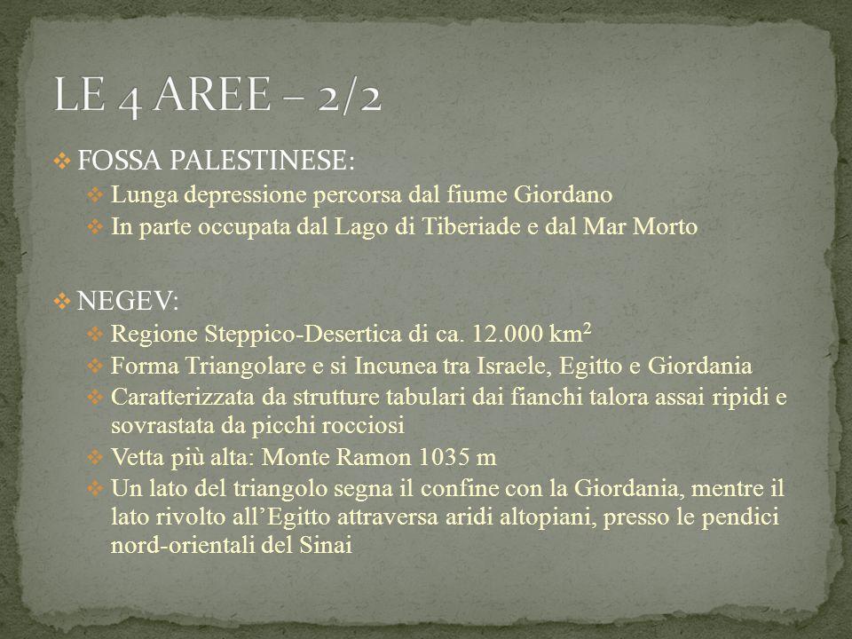 FOSSA PALESTINESE: Lunga depressione percorsa dal fiume Giordano In parte occupata dal Lago di Tiberiade e dal Mar Morto NEGEV: Regione Steppico-Deser